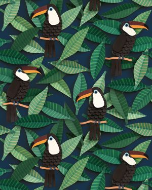 Toucan wallpaper