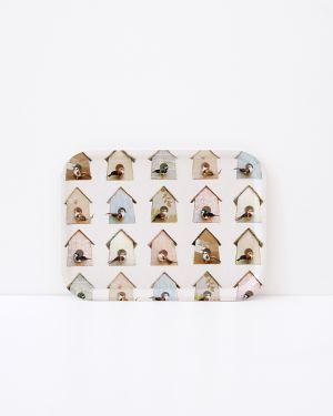 Birdhouse tray